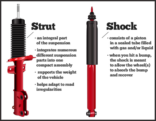 how to change front struts vs statesman